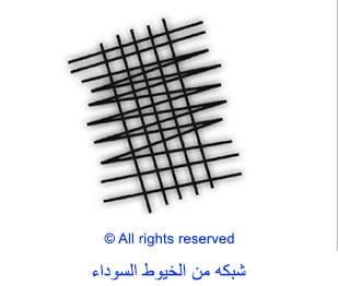 01-arabic_meshwork-of-black-threads