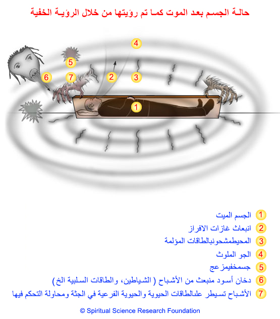 2-arabic-state-of-the-body