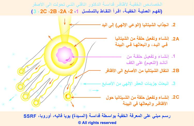 3-arabic_pp-hand-subtle-pic