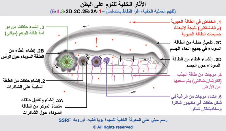 6-arabic-sleeping-on-stomach