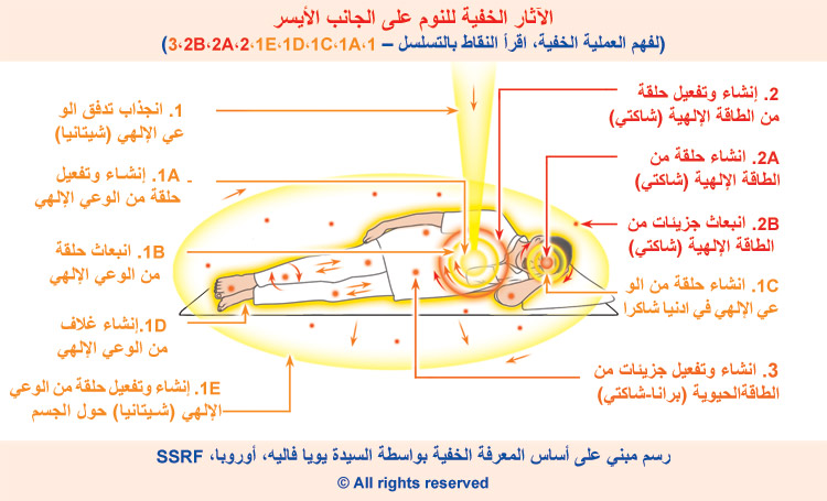 9-arabic_sleeping-left-side-subtle