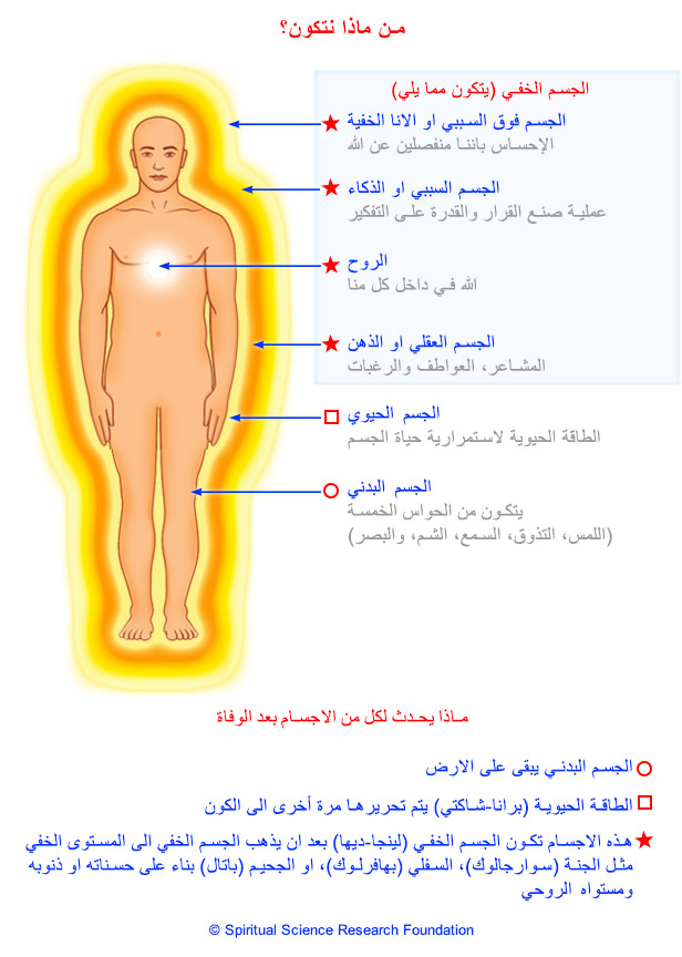 1_arabic_subtle-energy-system-in-the-body