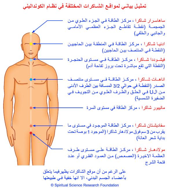 arabic-chakras