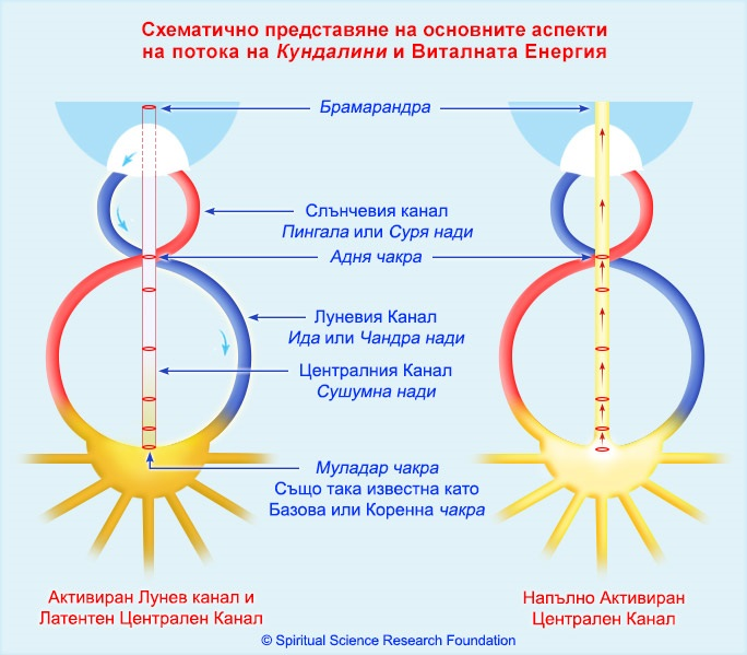 2-BG-Kundalini-Dorman-and-Active