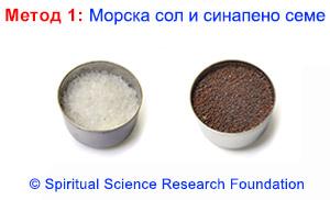 1-BG-Salt-and-Mustard