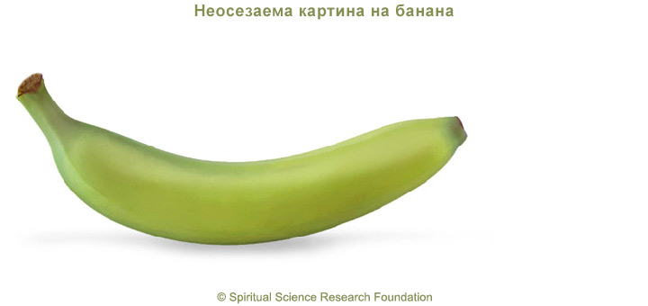 4-BG-Banana-picture-subtle-1
