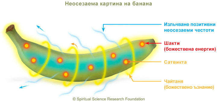 4-BG-Banana-picture-subtle-2