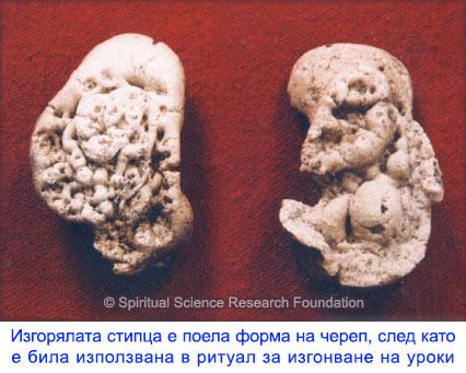 8-bg-Alum-skull