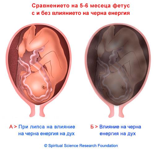 7-BG-pregnancy