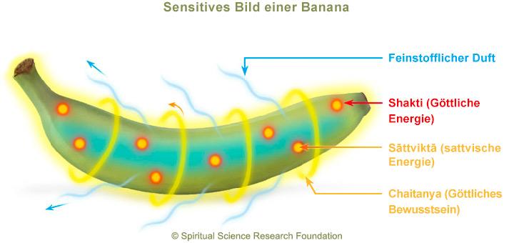 banane-subtil-2