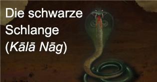 Die schwarze Schlange (Kala Nag)