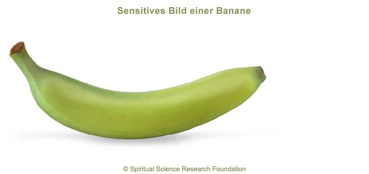 4-ger-Banana-picture-subtle