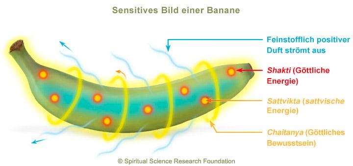 4-ger-Banana-picture-subtle2