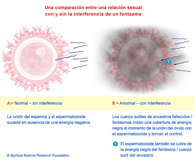 3-SPA-pregnancy