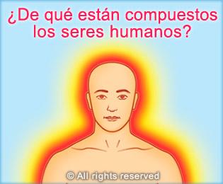 De que estan compuestos los seres humanos