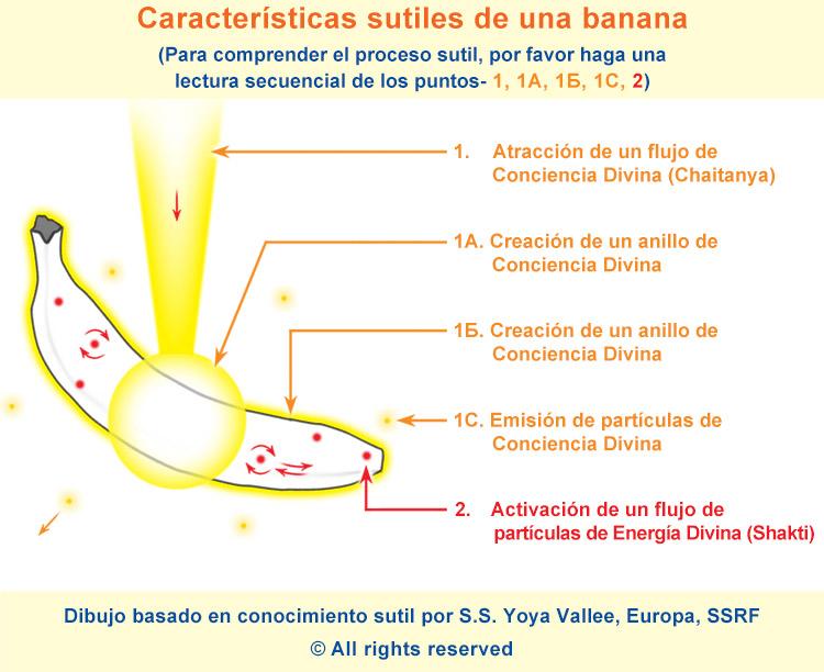 SPA-banana-subtle-new