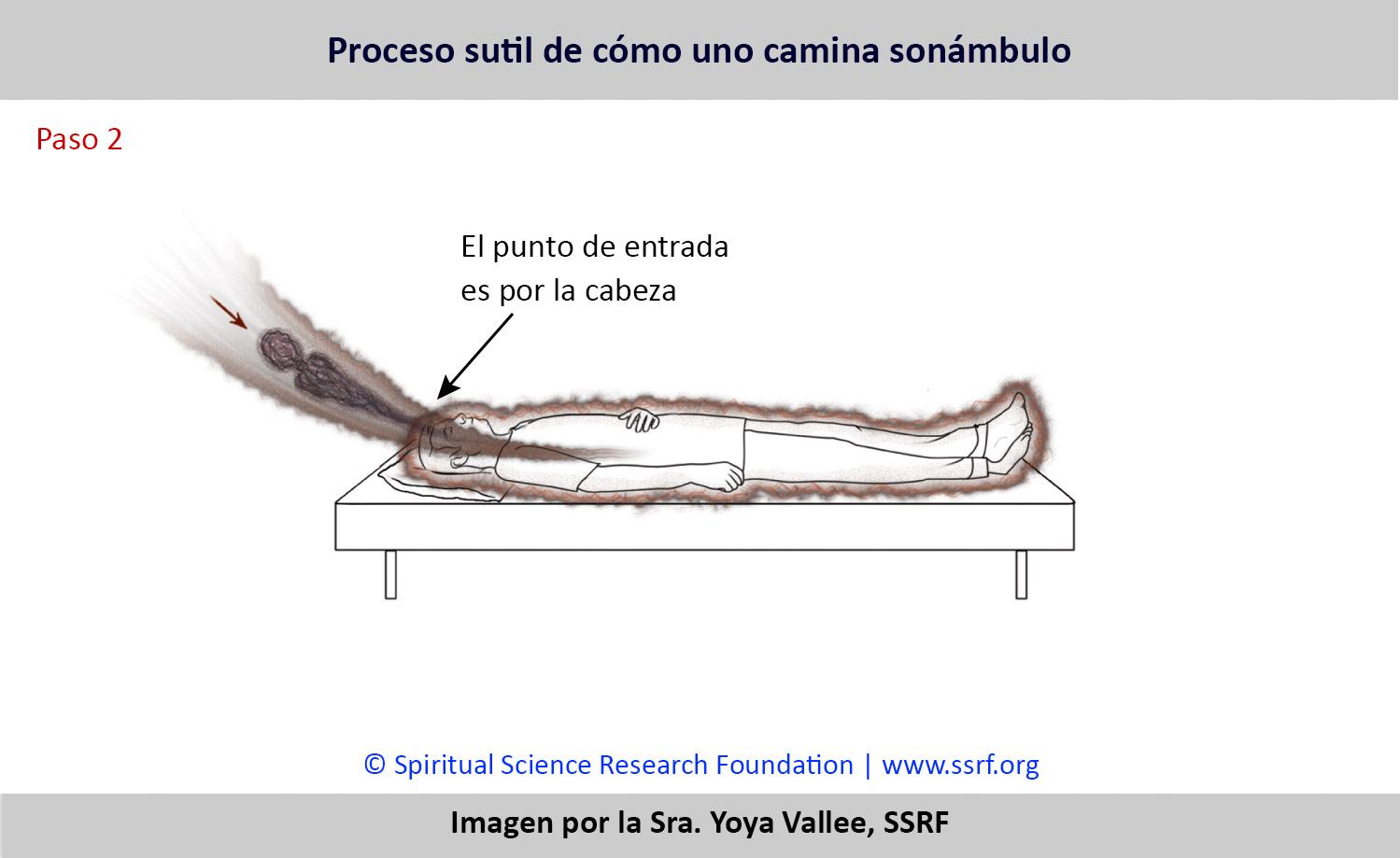 SPA-Subtle-process-behind-sleepwalking2
