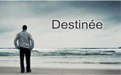 Fran-Destiny_Edited_Ruchi