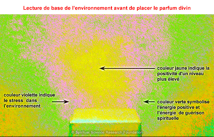 2-fra_l_divine-perfume-materialising-spontaneously