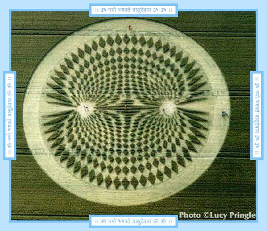 H-negative-crop-1