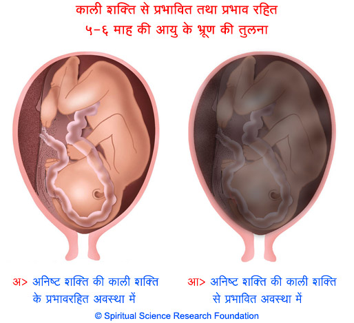 7-HIN-pregnancy