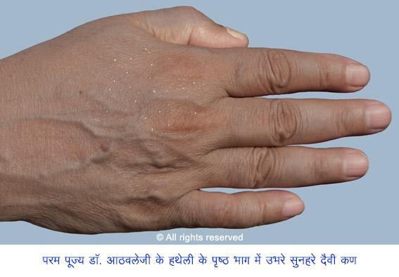 2-HIN_PP-hand