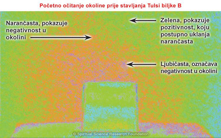 03-CRO-pip_pp_no_tulsi