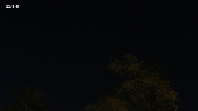 Image-6-6681