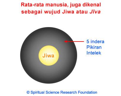 IND_1-jiva