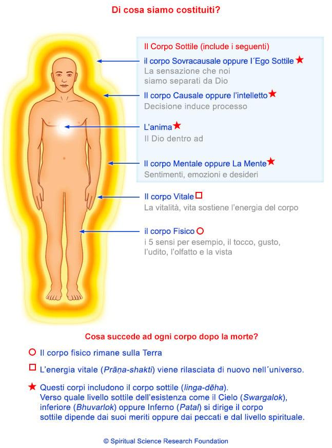 Sistema vitale e sottile energia nel corpo