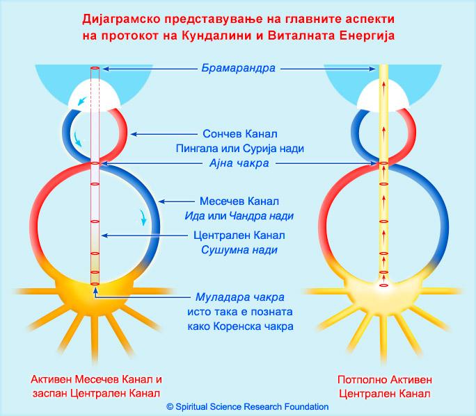 3-MKD_Kundalini-Dormant-and-Active