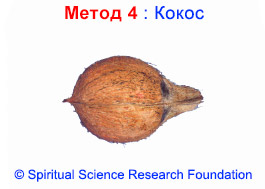 4-MKD-Coconut