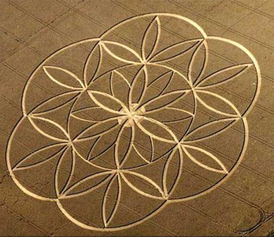 Positive-crop-circle-1