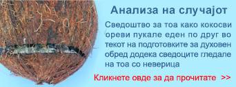 05-MKD-Coconut-case-study-teaser