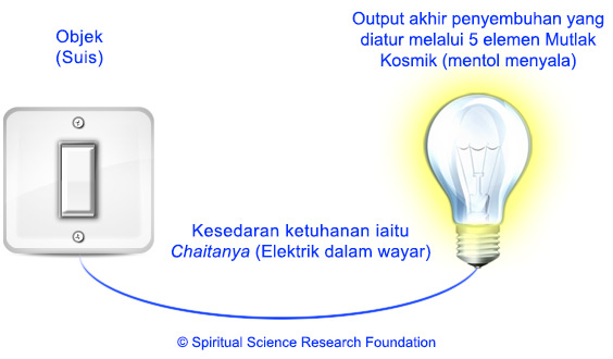 4-MALAY-bulb