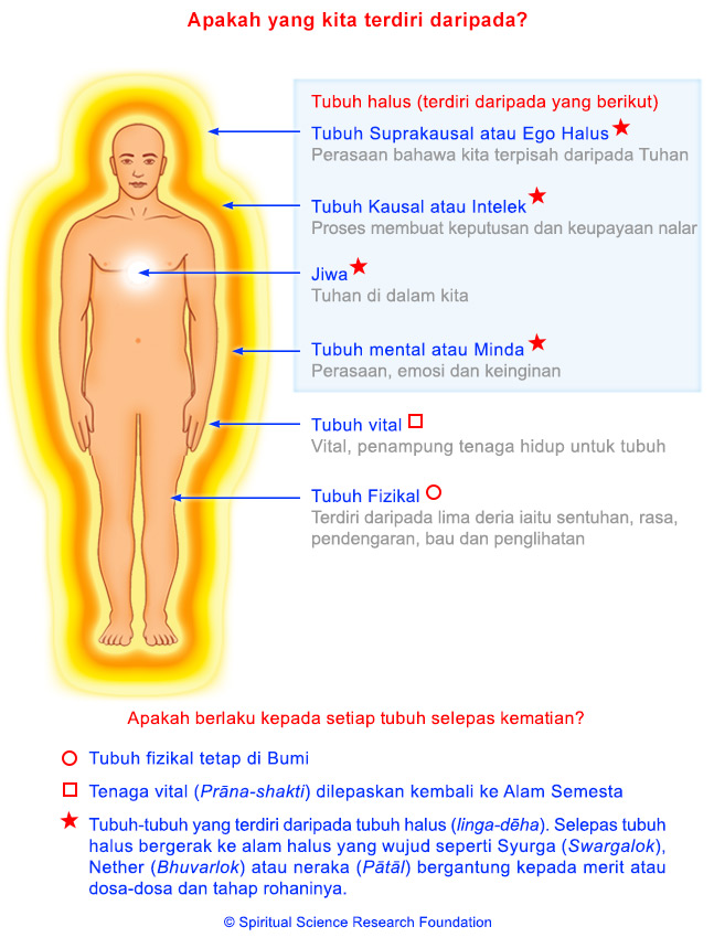 2-MALAY-comprised-of-human