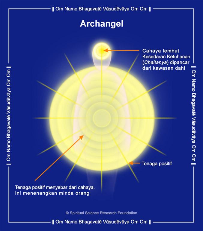 Malay_Archangel