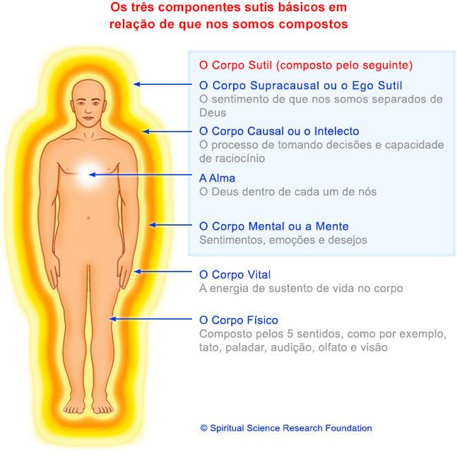 port-comprised-of-human