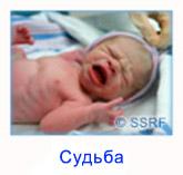 2_RUSS_Destiny