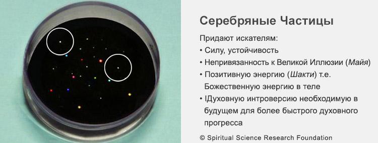 FSS_RUSS-divine-particles2