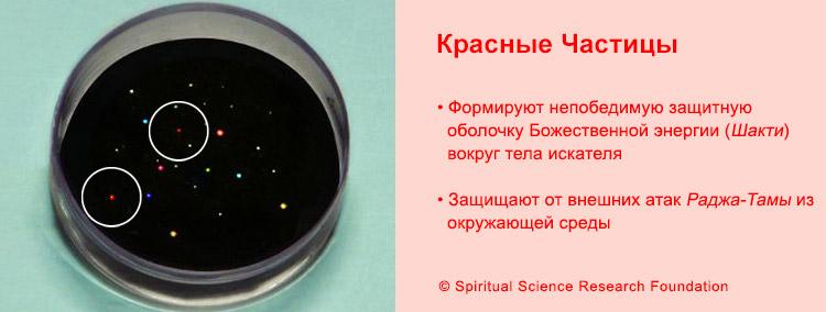 FSS_RUSS-divine-particles4