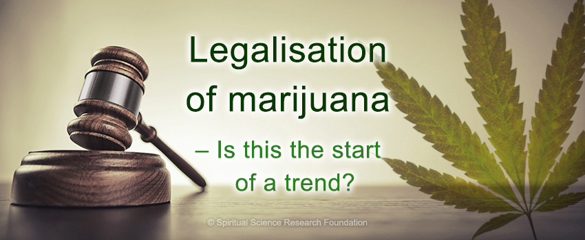 Legalisation of marijuana – Is this the start of a trend?