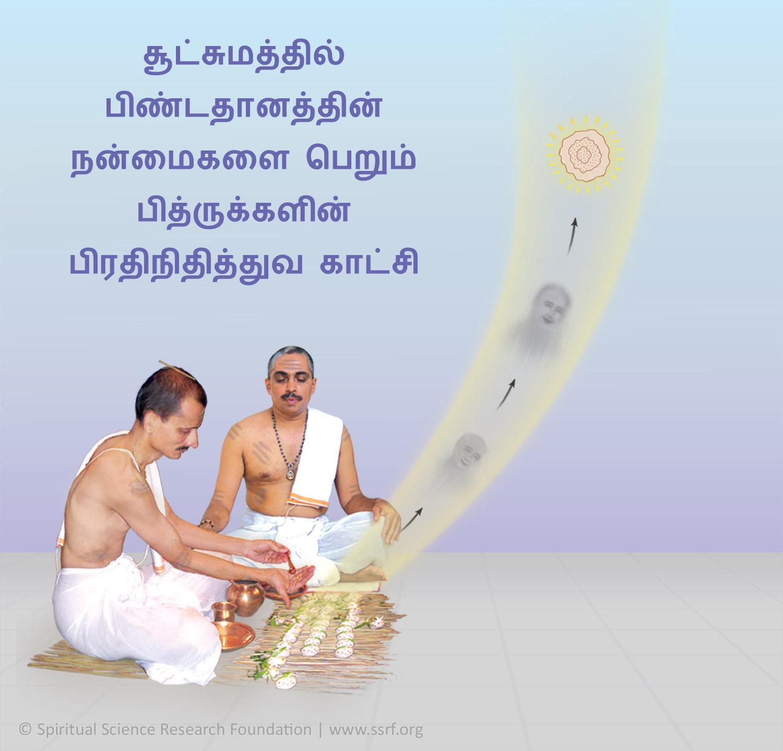 பித்ரு பட்ச சிரார்த்தத்தின் போது காகங்களுக்கு உணவிடுதலின் மகத்துவம்