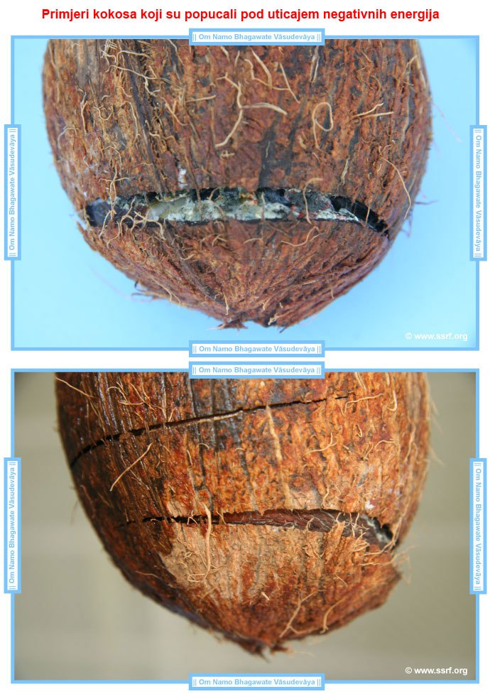 coconuts-cracked-by-negative-energies-examples