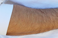Hair on arm regulates subtle heat
