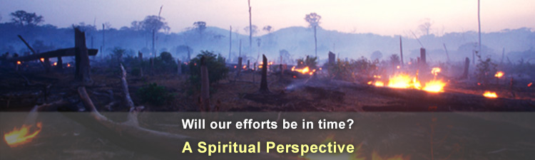 Natural disasters - Is there time?