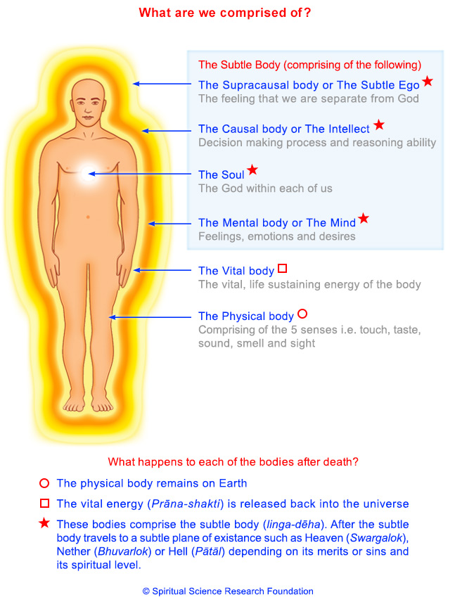 Vital and Subtle energy systems of human body