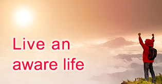 Living an aware life and its benefits for the afterlife