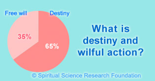 destiny and wilful action