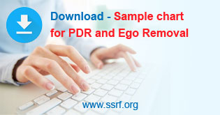 Download-PDR-chart-button